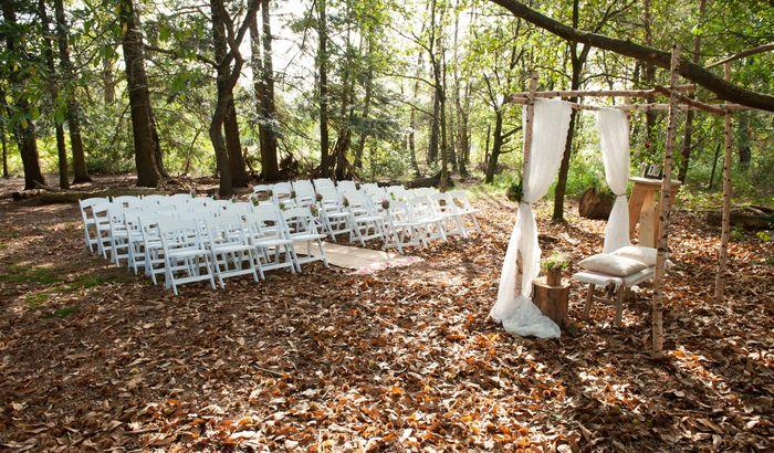 Lieu du mariage au milieu du bois